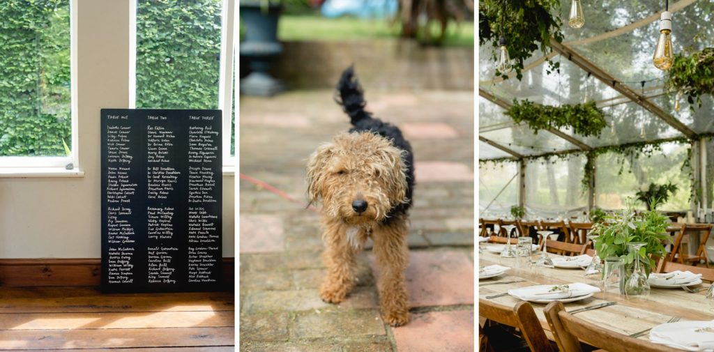 table details at outdoor wedding and bride and grooms pet dog